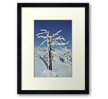 A diamond-dust day at the Smrk mountain 2 (Jizera mountains, Czech Republic) Framed Print