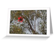 Flower MANDA Greeting Card