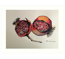 Pomegranate. Pen and wash 2012 Art Print
