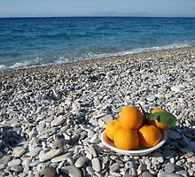 oranges on the beach by annet goetheer