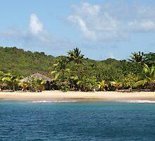 Anchored in Saline Bay Mayreau by moor2sea
