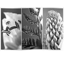 Texture Triptych Poster