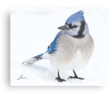 Forever In Blue Metal Print