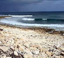 A Mexican Beach by Wayne George