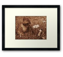 'Meeting milo - Its a small world' Framed Print