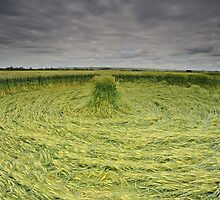 Crop Circle by Kasia Nowak