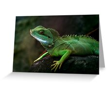 Little dragon 3 Greeting Card