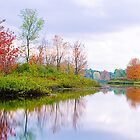 Fall Reflection by Beth Mason