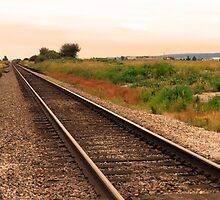 Country Tracks by Lesliebc