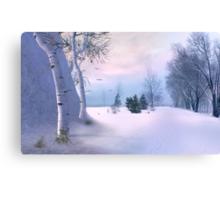 beneath a winter dawn Canvas Print