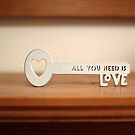 all you need is love by weglet