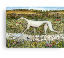 The Uncomparable Grace of a Greyhound Canvas Print