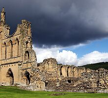 Byland Abbey by John (Mike)  Dobson