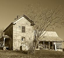 Country Farm House by Jane Best