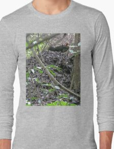 Australian Brush Turkey on his mound Long Sleeve T-Shirt