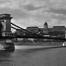 Chain Bridge and The Buda Castle by Béla Török