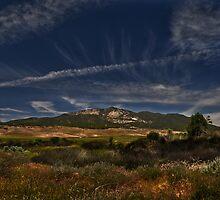 """"""" High desert grasslands #2 """" by CanyonWind"""