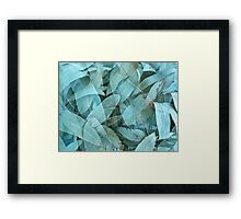 Eucalypus tree leaves 1 Framed Print