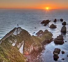 Nugget Point - New Zealand by Kimball Chen
