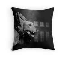 Dogs with game face on .27 Throw Pillow