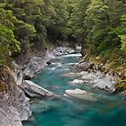 Blue Pools of Haast - New Zealand by Kimball Chen
