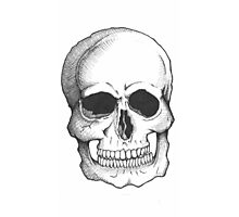 skully Photographic Print