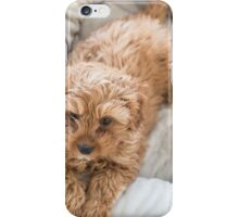 Hello sweet little Archie iPhone Case/Skin