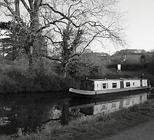 A trip along Tiverton Canal by Emma Coles