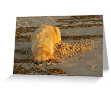 Digging Greeting Card
