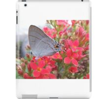 Butterfly feed nectar iPad Case/Skin