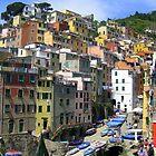 Riomaggiore  Cinque Terre by Neville Gafen