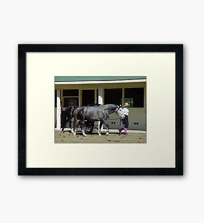 The Runaways Framed Print