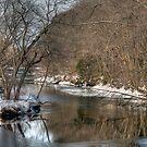Winter Views of Contoocook River  by Monica M. Scanlan