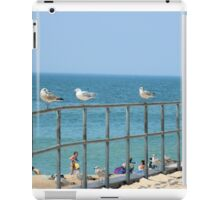 Sky, Water, Sand, Birds, Humans and a Fence  iPad Case/Skin
