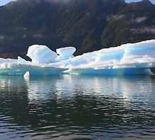 Reflected Iceberg in Blue and White by Laurel Talabere