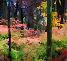 "A View of the Woods in Fall by Christine ""Xine"" Segalas"