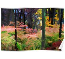 A View of the Woods in Fall Poster