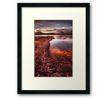 Shoreline Color Framed Print