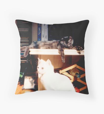 Adolescent Kittens2 Throw Pillow