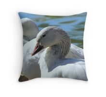 Snow Geese ~ Migrants Throw Pillow