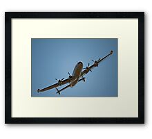 Here's Connie! Framed Print