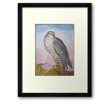 Falcon(water color) Framed Print