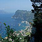 Capri Italy by imagic