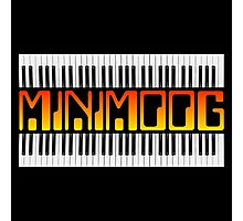 Vintage Minimoog  Synth Photographic Print
