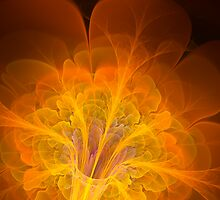 Fire Flower. by nclames