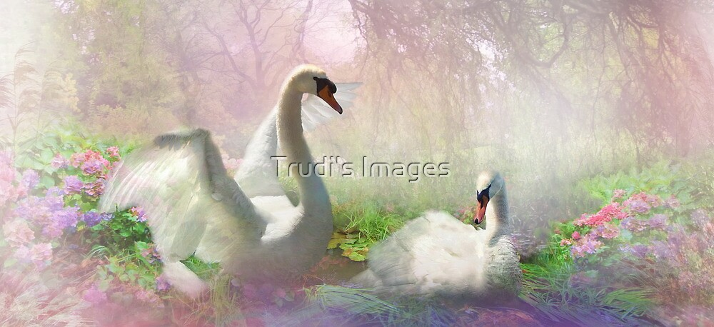 The Lightness of Being  by Trudi's Images