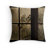 Window blinded by light Throw Pillow