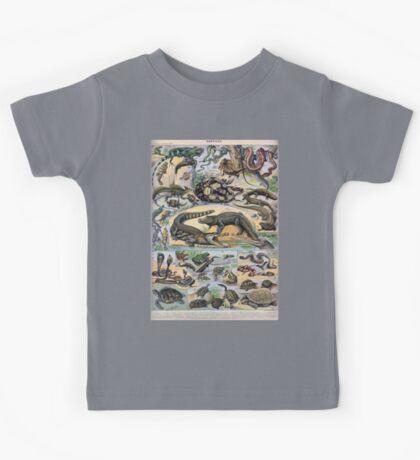 Adolphe Millot Reptile Kids Tee