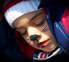 Sleeping Mouse  by Sunil Bhardwaj