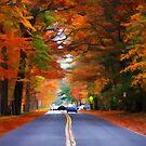 "Autumn Road by Christine ""Xine"" Segalas"